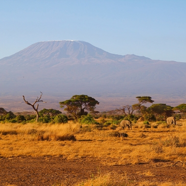Mount Kilimanjaro (2)